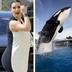 Who Wore It Better? Kim Kardashian vs. Shamu